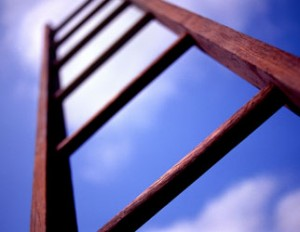 ladder_322