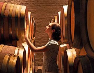 wine_cellar_322