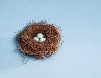 nest_egg_322