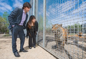 James Cohen and Linda McGarva-Cohen of Winnipeg gave a $500,000 cash donation for a Siberian tiger exhibit at the Assiniboine Park Zoo. (Photograph by Thomas Fricke)