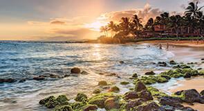 Hawaii 295