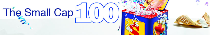 The Small Cap 100