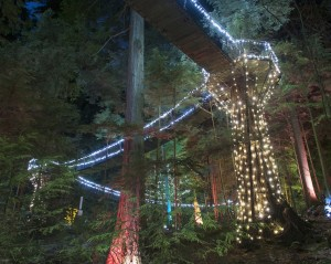 Christmas in Vancouver, Capilano Suspension Bridge Park (Getty / Brian Caissie)