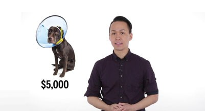 Pet insurance - barry Choi_401