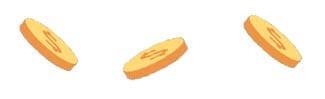 coin separator2