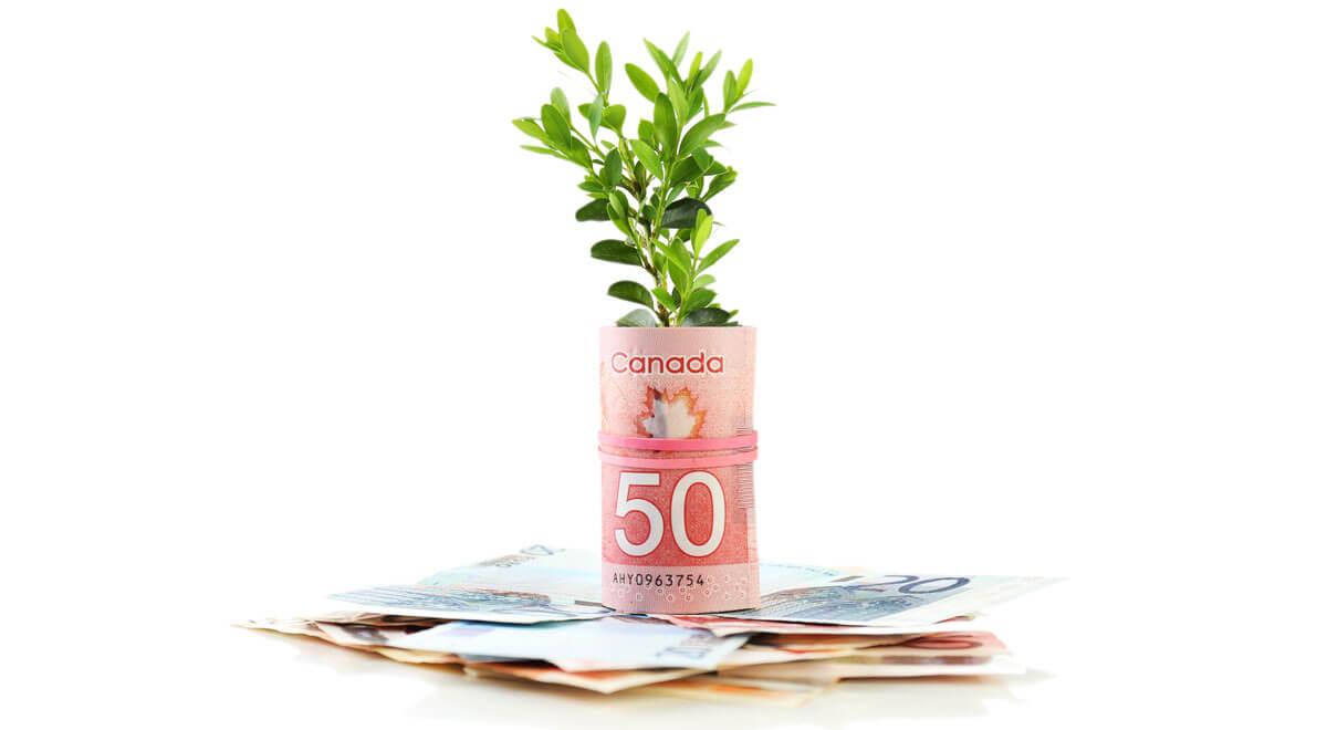 TFSA money growing_FB
