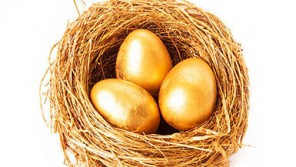 golden eggs in basket