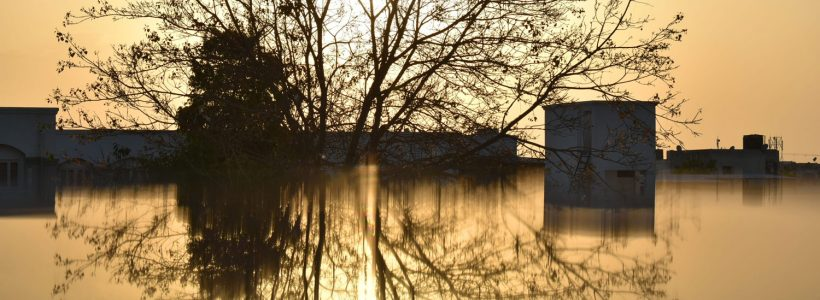 The sun is setting on a flood scene, with trees and homes peaking out of the water.